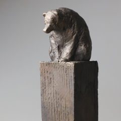 Im Zeichen des Großen Bären